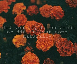 flowers, quotes, and ryan image