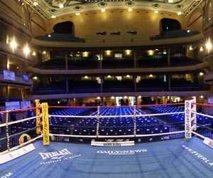 boxing, nyc, and golden gloves image