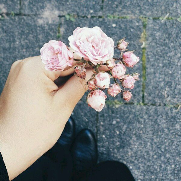 flowers and tumblr image