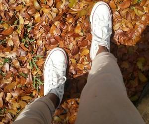 converse, seasons, and fall image