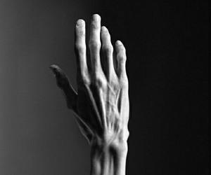 hand, black and white, and bones image
