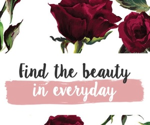 beauty, everything, and find image