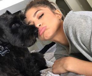 zendaya and dog image