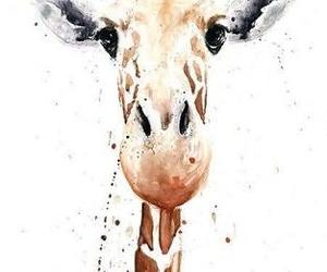 giraffe, animal, and watercolor image