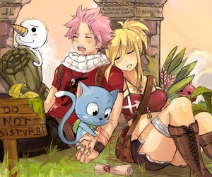 happy, natsu dragneel, and fairytail image