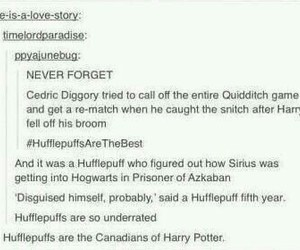 cedric diggory, funny, and harry potter image