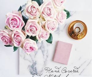 rose, marble, and pink image