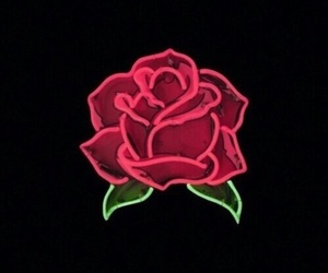 rose, neon, and wallpaper image