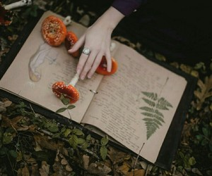book, witch, and herbs image