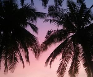 sky, sunrise, and beautifulsky image
