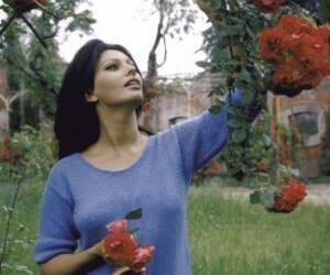 sophia loren, vintage, and flowers image