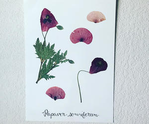 etsy, floral art, and botanical art image
