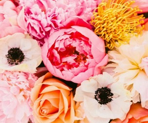 bouquet, brights, and floral image
