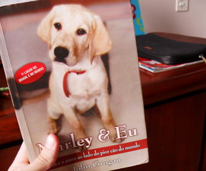 book, dog, and marley and me image