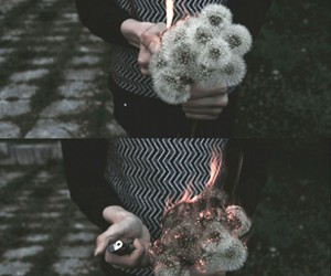 alternative, fire, and flowers image