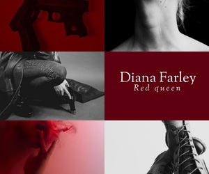 book, diana, and Queen image