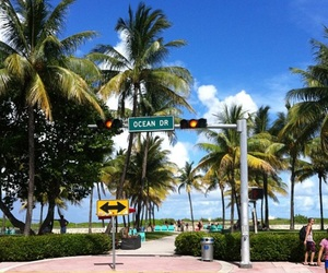 happiness, Miami, and travel image