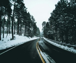 road, snow, and tree image