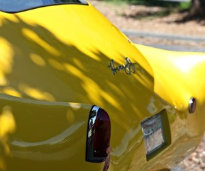cars, yellow, and frances colt image