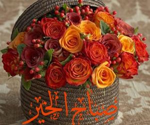 Image by Mohamed Abo El Yazid