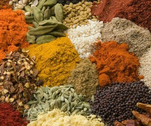 food, india, and spices image