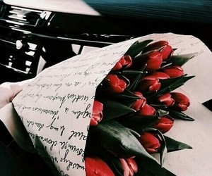 red, flowers, and theme image
