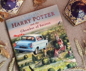 beautiful, books, and harry potter image