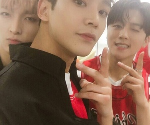 youngbin, rowoon, and zuho image