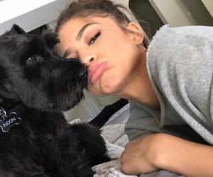 zendaya and dog image
