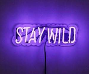 purple, neon, and wild image
