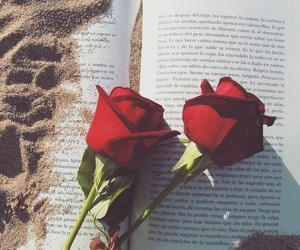 book, rose, and beach image