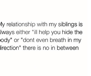 funny, siblings, and Relationship image