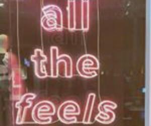 feelings, Drake, and pink image