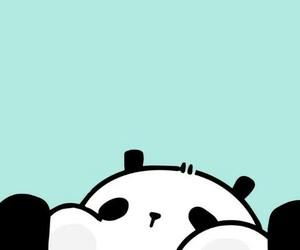 wallpaper and panda image