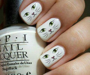 blanco, cat, and nails image