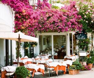 flowers, cafe, and italy image