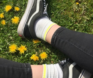 flower, vans, and grass image