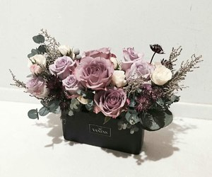 beauty, flower, and roses image