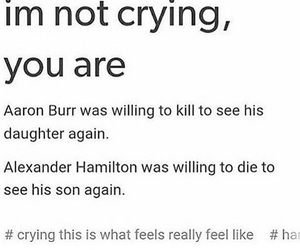 hamilton, aaron burr, and musicals image