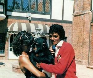 michael jackson, mj, and cute image