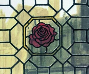 rose and window image