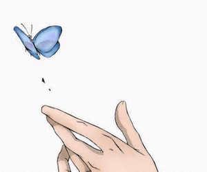 anime, farfalla, and manga image
