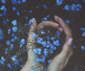 blue, flowers, and hands image