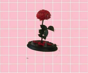 background, flower, and line image