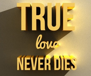 love, never, and true image