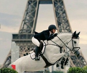 horses, cities, and equestrian image