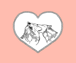 wolf, love, and heart image