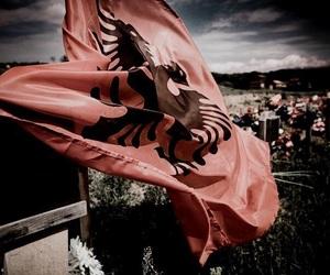 albanian image