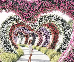 flowers, beautiful, and heart image