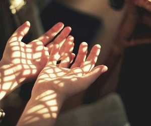 beautiful, hands, and light image